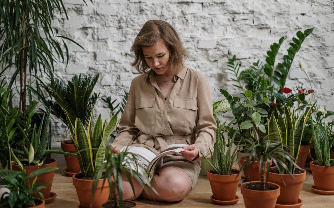 Kunstplanten in je tuin